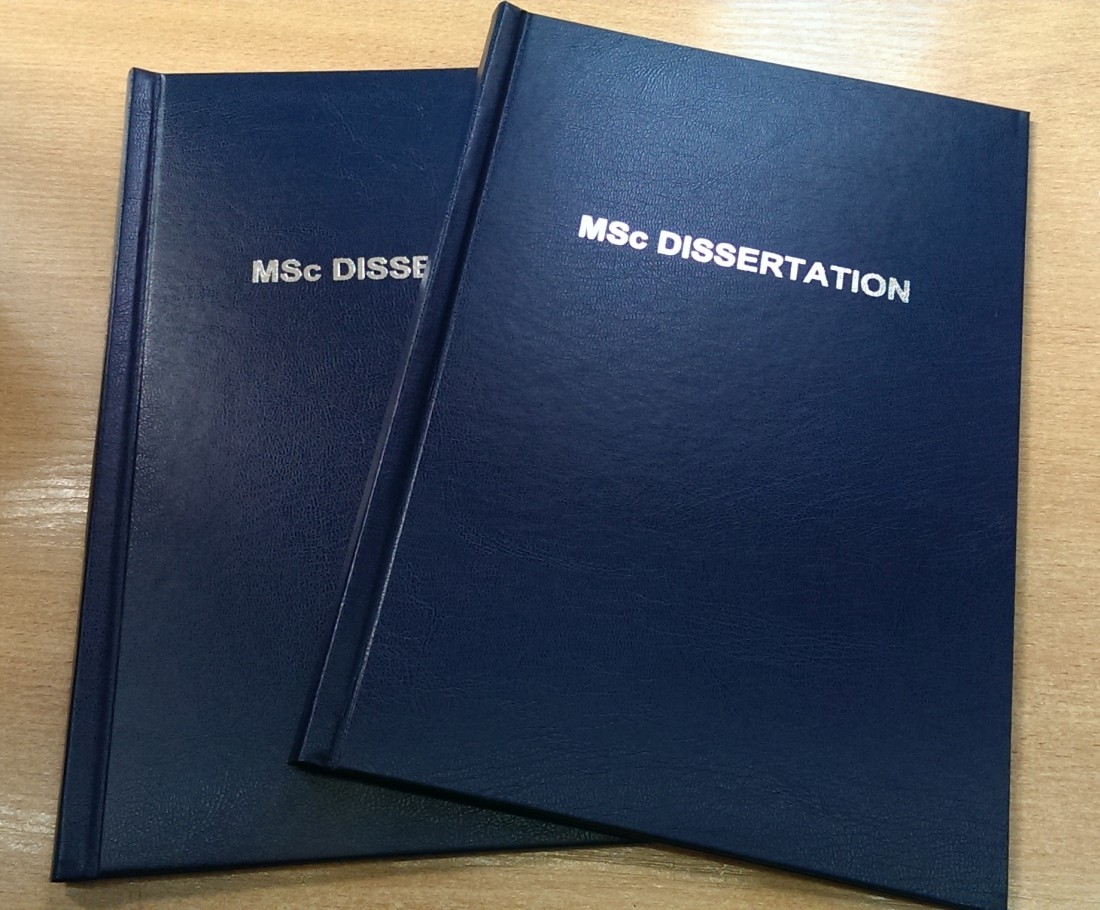 dissertation msc Theses in civil engineering mainly soils: mainly structures: reinforced soil in-situ testing sedimentation and consolidation of soft clays unsaturated and gassy soils flow abstract & thesis back to top finite element analysis.